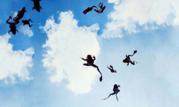 Frogs-falling-from-the-sky-magnolia-31608118-1338-801